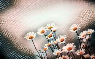 IMG-PHOTO-ART--1085847863